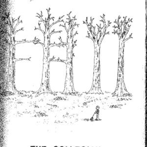 The Collegian 15 October 1978.pdf